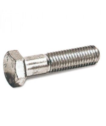 BURLETE PUERTA-VENTANA 10x15 ESPUMA REF.05454